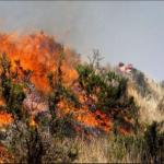 Minam promueve prevención y control de incendios forestales