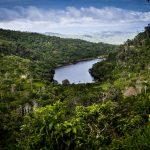 San Martín tiene grandes perspectivas de crecimiento económico
