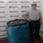 Noventa kilos de hoja de coca son comisados en Leoncio Prado