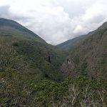 Autoridades calqueñas buscan confirmar hallazgo de la Ciudad Perdida de Paititi