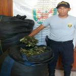 Policía comisa hoja de coca en Leoncio Prado