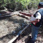 Policía destruye laboratorio clandestino en Leoncio Prado