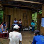 Promueven manejo integral del cacao en Huánuco y San Martín