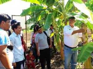 San Martín: Promueven intercambio de experiencias tecnológicas agrícolas