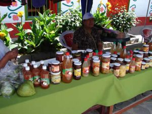 Destacan uso de tecnología para mejorar cultivos agroindustriales en Ayacucho