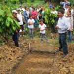 Destacan rol del suelo como principal factor en producción cacaotera
