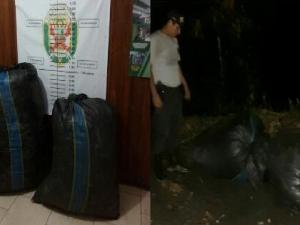 Leoncio Prado: Decomisan más de cien kilos de hoja de coca