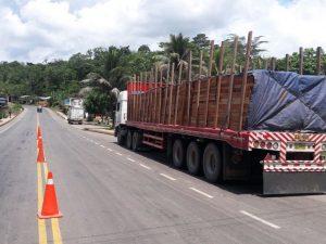 Madera es incautada por la policía en Leoncio Prado