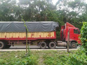 Madera ilegal es incautada por la policía en Leoncio Prado
