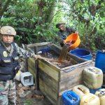 Vraem: Destruyen poza de maceración de hoja de coca en La Mar