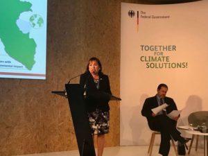 CO23: Perú remarcó rol de bosques en proceso de desarrollo sostenible