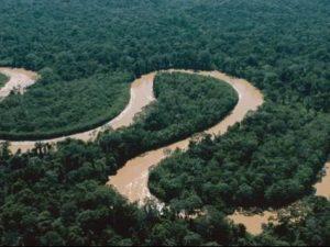 Nivel de ríos amazónicos presentan descenso