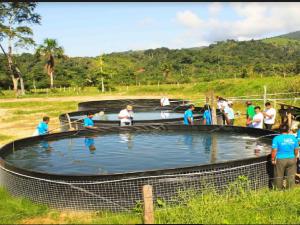 Acuicultores del Alto Huallaga realizan pasantía en San Martín
