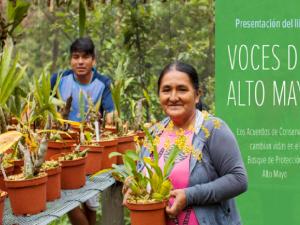 Mañana presentarán libro sobre conservación de bosque de Altomayo