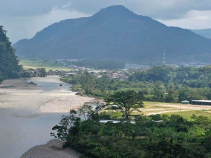 Plan de Inversión Forestal será implementado en el segundo semestre del 2018