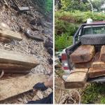 Producto forestal es incautado en Leoncio Prado
