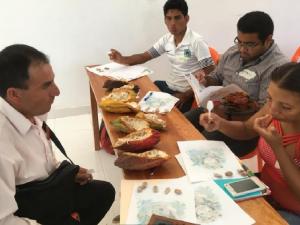 Seleccionan y entrenan a catadores de cacao en la región San Martín