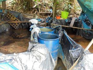 Vraem: Destruyen dos pozas de procesamiento de hoja de coca