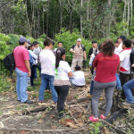 Programa Bosques reforzó gestión en 2017 para conservar más bosques
