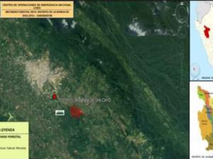 San Martín: Bomberos y Policía extinguen incendio forestal