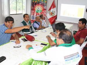 Huánuco: Coordinan acciones para combatir ataque del mazorquero que afecta al cacao