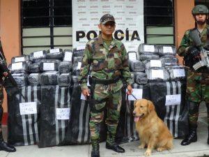Huánuco: Incautan más de 214 kilos de marihuana en Pillao
