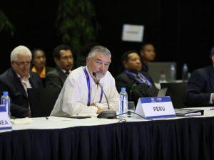 APEC incorporó nueva enfoque para combatir tala ilegal