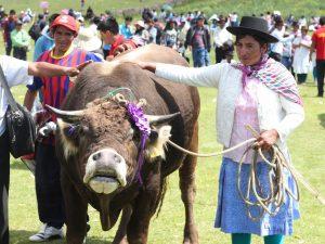 Ayacucho: Realizarán festival del choclo y cuy en Socos