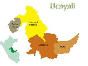 Ucayali en emergencia sanitaria para reforzar acciones contra el dengue y fiebre amarilla