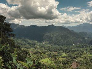 San Martín: Aprueban renovación de junta directiva del Comité de Gestión del ACR-Cordillera Escalera