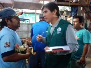 Inspeccionan establecimientos de eventos gallísticos en Ucayali