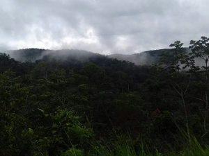 San Martín ya tiene octava área de conservación privada