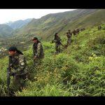 Vraem: Policía Nacional decomisa más de tres toneladas de hoja de coca ilegal
