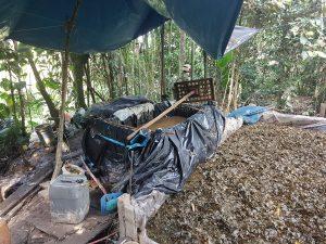 Vraem: Policía nacional destruye cinco pozas de maceración de coca