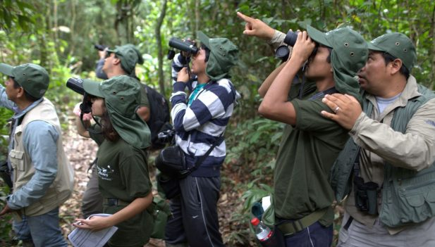Colombia lidera avistamiento de aves en Global Big Day