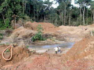 Bahuaja Sonene: ¿Cómo afectan la minería ilegal y el narcotráfico este Parque Nacional?