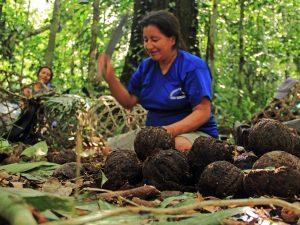 Comunidades nativas selváticas participan en conservación de reservas comunales