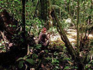 Encanto Amazónico