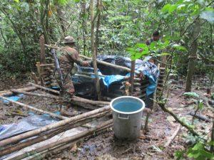 Destruyen 38 laboratorios de droga y erradican 13 200 hectáreas de cultivos ilegales de coca