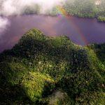 Implementan iniciativa a favor del Parque Nacional Cordillera Azul