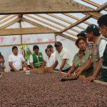 Inauguran Centro de Beneficio del Cacao en Madre de Dios