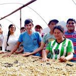 Junín: Unas 430 familias cafetaleras se benefician con secadores solares
