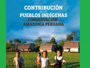 ¿Cómo aportan los pueblos indígenas en la conservación de la Amazonía?