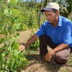 Minagri reconocerá actores que contribuyen en optimización agrícola