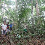 Pasco: Comunidad Dinamarca juega partido clave contra la deforestación