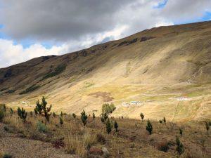 Recuperan más de 100 hectáreas de tierras degradadas en Cusco