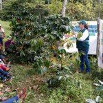 Ucayali: Caficultores son capacitados en Escuela de Campo