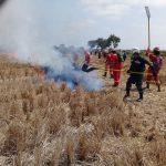 Conforman brigadas contra incendios forestales en La Libertad