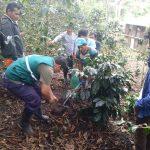 Junín: Agricultores fortalecen conocimiento en muestreo de suelos