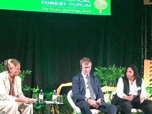 Ministra Fabiola Muñoz participó en foro internacional sobre deforestación